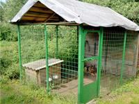 """Фото гостиницы для животных """"Питер Догс Отель"""" открытый вольер"""